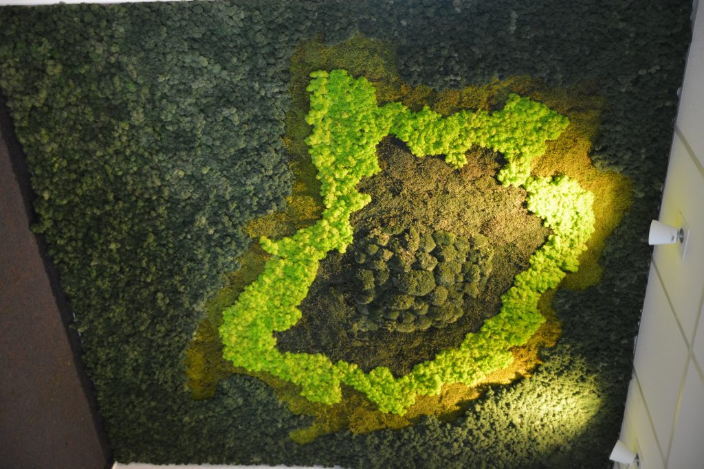 Perete verde mixt din licheni decorativi si muschi stabilizati   multicolor